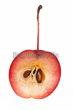 red paradise apple isolated on