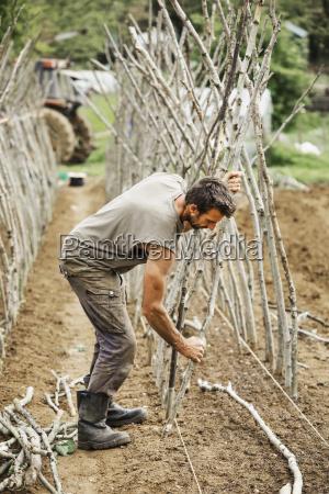 hombres hombre masculino agricultura al aire