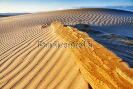 sand dune at delta del ebro