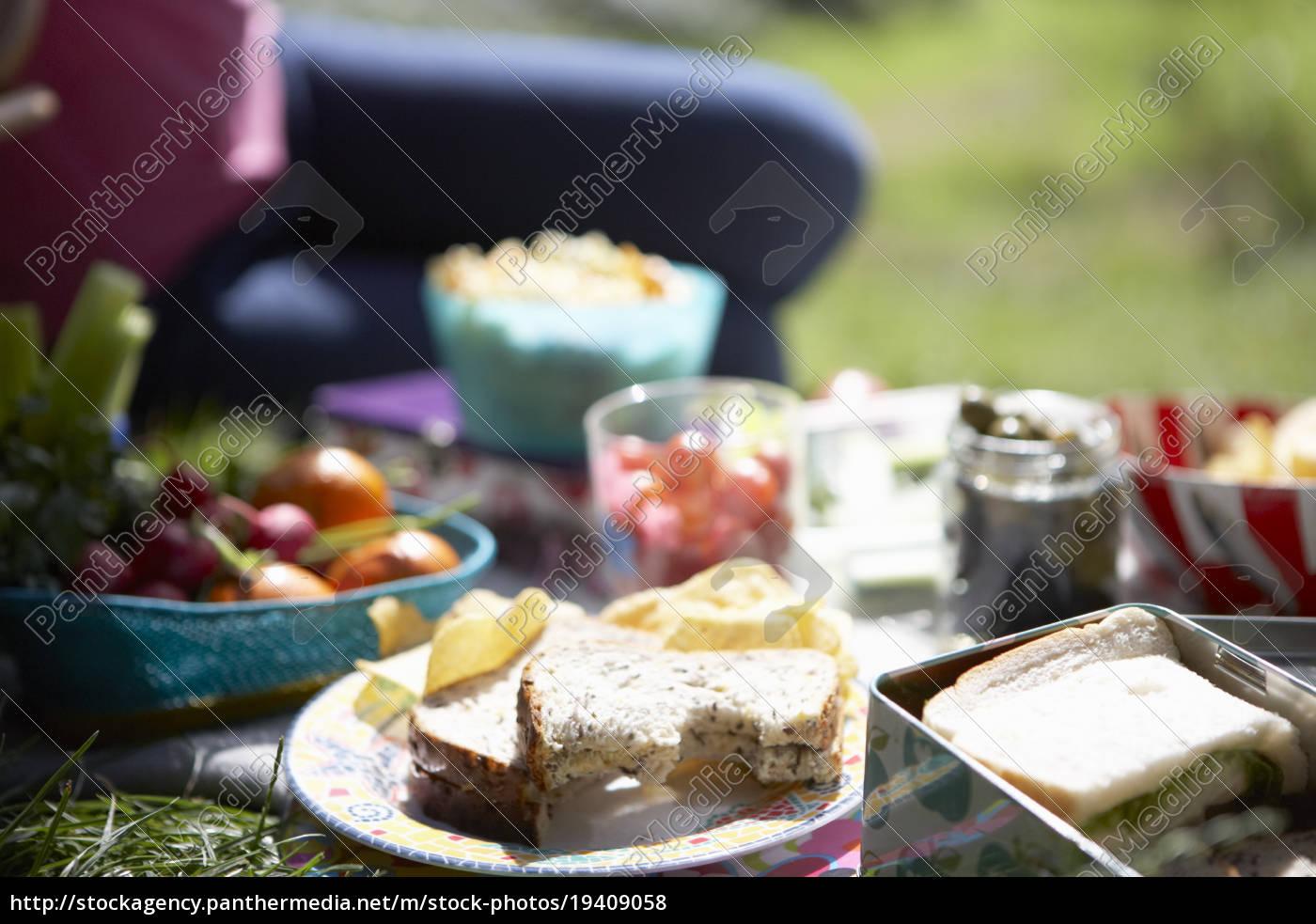 comida, de, picnic, colocada, en, la - 19409058