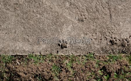 paseo viaje suelo hormigon malasia al