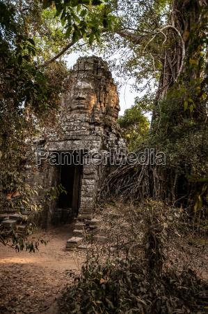 buddha face at ta prohm temple