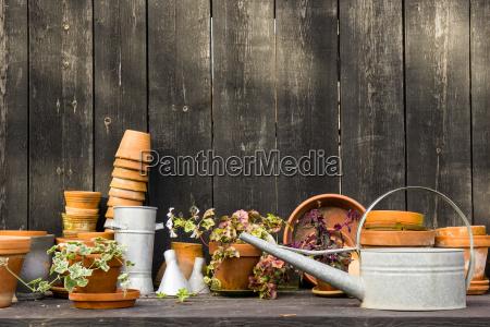 romantica mesa de plantas idilica en