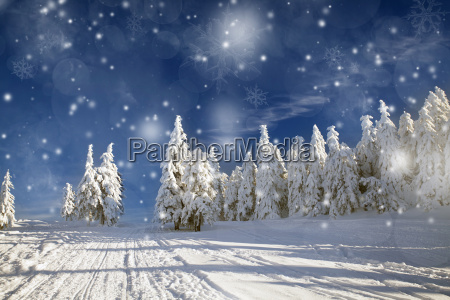 fantastico paisaje de invierno