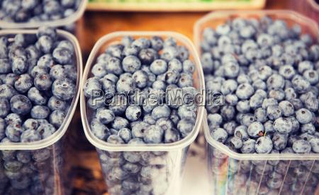 naturaleza muerta comida objeto agricola bio