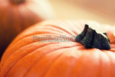 naturaleza muerta naranja comida objeto bio