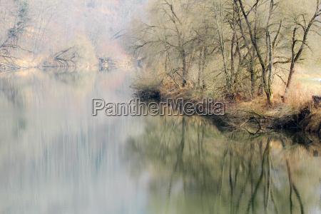 arbol arboles reflexion banco rio agua