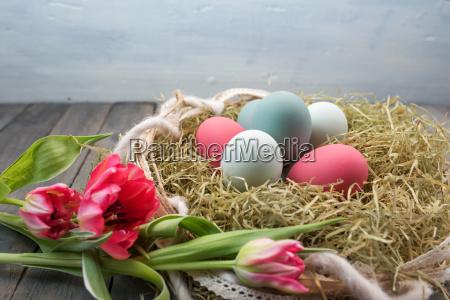 bodegones con nido de pascua y