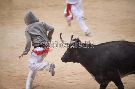 bull fighting san fermin festival plaza
