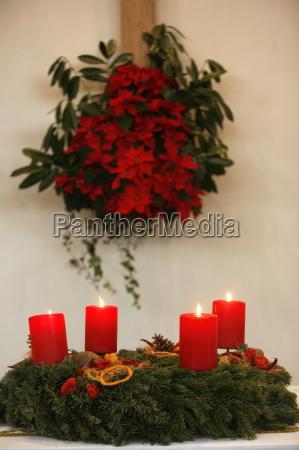religion flor flores planta advenimiento europa