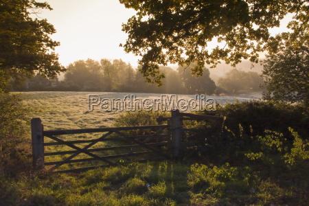 early morning sun on frosty farmland