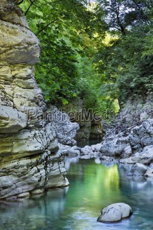 color arbol verde grecia reflexion europa