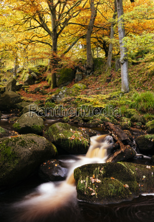 padley gorge peak district derbyshire england