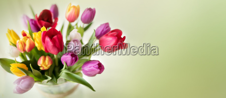 colorful spring bouquet with tulips