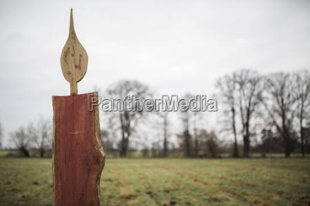 enorme arbol invierno campo escultura vela