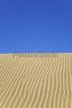 nueva zelanda vista de las dunas
