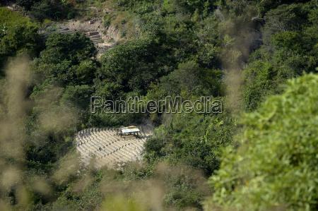 sudamerica bolivia coroico campo de coca