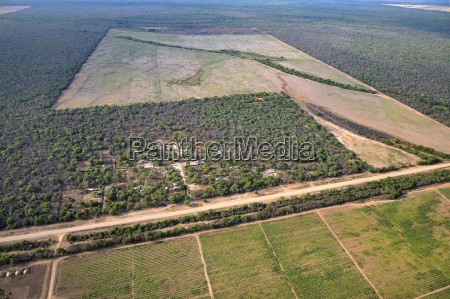 peligro paseo viaje arbol conflicto agricultura