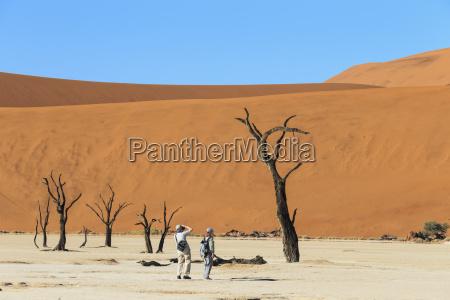 namibia namib naukluft desierto de namib