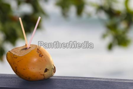 bebida de coco en la playa