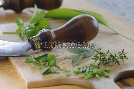 mesa especia frescura sabio preparacion perejil