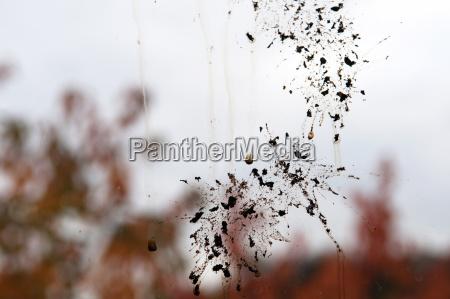 alemania baden wurtemberg stuttgart splatter en