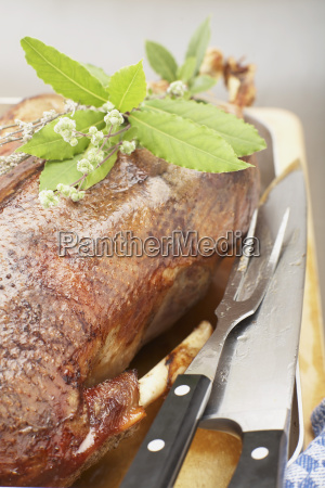roasted goose in roasting tin close