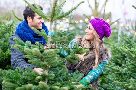 woman and man buying christmas tree