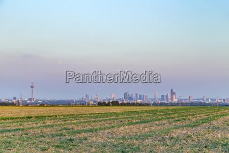 view of frankfurt skyline
