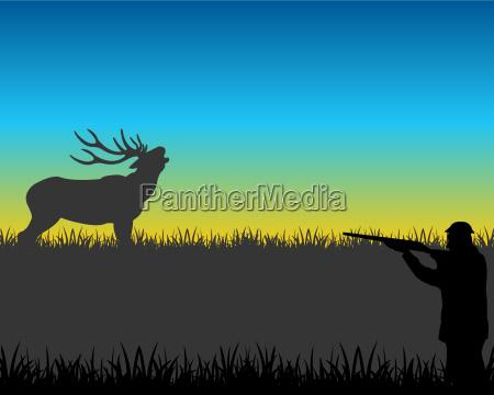cazar en ciervos