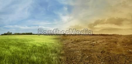 paisaje del campo del prado con