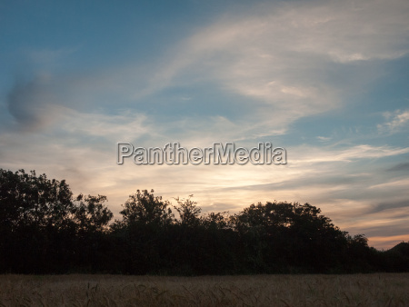sunset over a meadow outside in