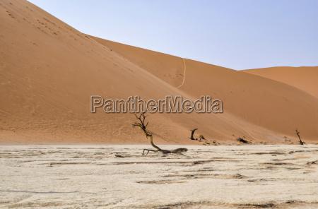 desierto de namib en namibia