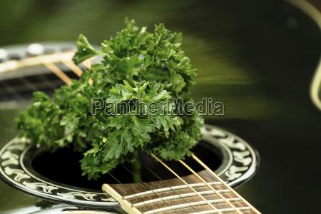 comida musica verde negro guitarra cadenas