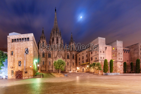 barcelona cathedral in the moonlit night