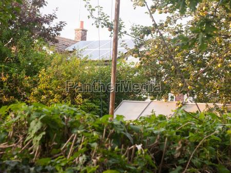 back, garden, scene, outside, in, sunset - 22936127