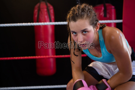 portrait of young female boxer sitting