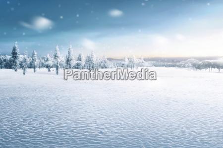 paisaje de campo cubierto de nieve