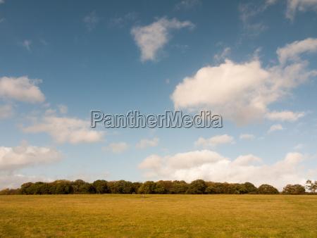 beautiful empty farm plain flat grass