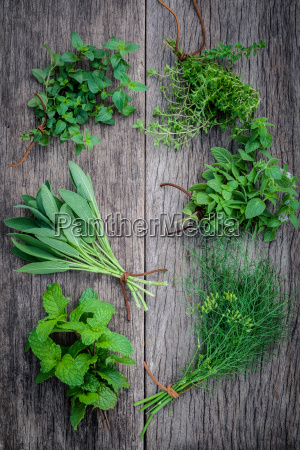 varias hierbas aromaticas y especias de