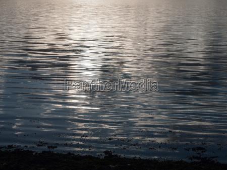 beautiful water surface sunset light waves