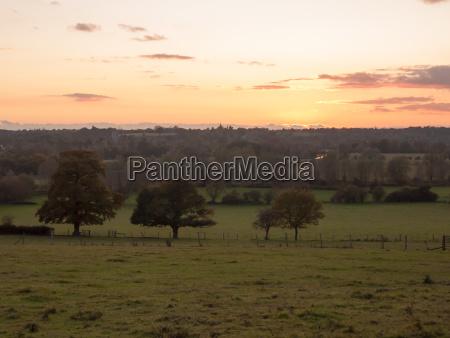 beautiful country scene fields trees horizon