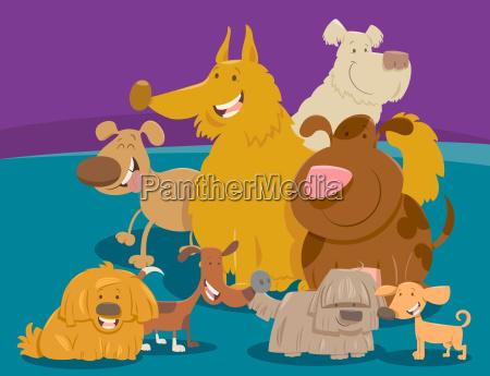 perros y cachorros de animales de