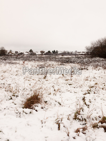 snow covered outside field meadow winter