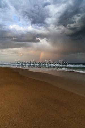 paisaje de playa y oceano con