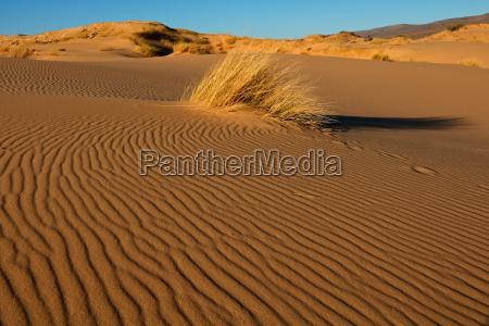 desierto africa sudafrica africano paisaje naturaleza