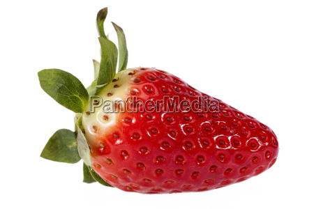 fresh fruit of red strawberry isolated