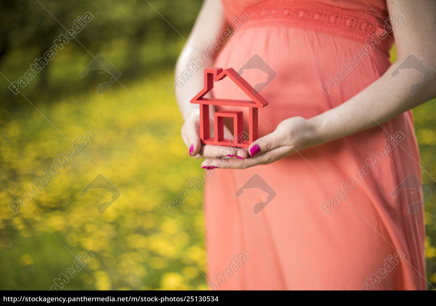 home, , meadow, , spring, , young, beautiful, pregnant - 25130534