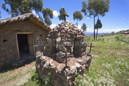 religion iglesia arbol piedra flor planta
