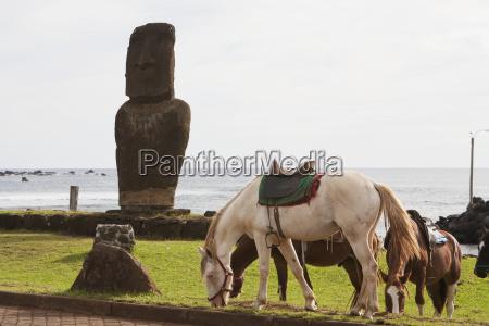 arte escultura caballo caballos chile america